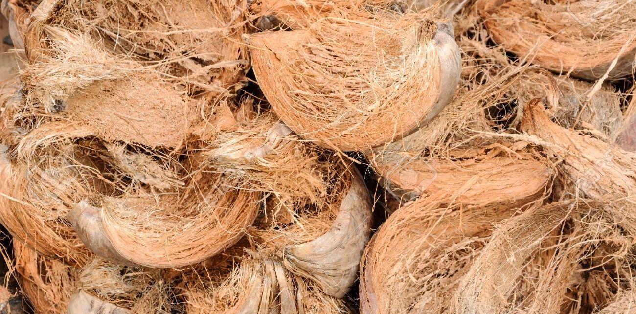 Cara membuat cocopeat dari sabut kelapa